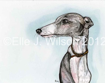 Whippet Dog Art Print