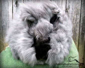Cruelty Free Black Angora Rabbit Wool Angora Fiber Natural Angora Wool English Angora Rabbit Fur Spinning Fiber Bunny Wool from Doodle UNCUT