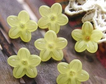 10 pcs 20mm - Frosted five petal flower bead (FL015-K)