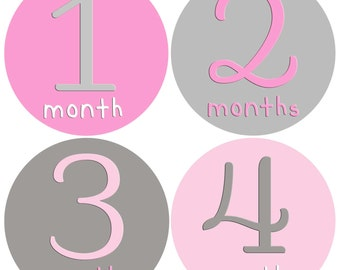 Baby Girl Month Stickers Monthly Baby Stickers Milestone Baby Month Stickers Monthly Bodysuit Pink Grey Baby Girl Gift