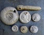 Reserved for Sue C. Artisan made ceramic pendants - set of 7 - fossils - SALE