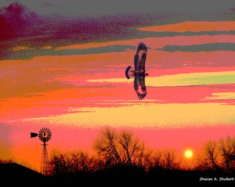 Rural Texas Art, Hawk in Flight, Old Windmill, Rustic Home Decor, Digital Bird, Southwestern Totem Animal, Sunset Sky, 8 x 10, Giclee Print