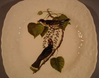 Vintage Audubon Birds of America Plate/ Kng Bird/ Alfred Meakin/ England / Home Decor/Beautiful!!