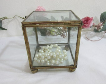 Terrarium Brass and Glass Small Display Case