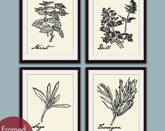 French Herb Prints (Series A4) Set of 4 - Art Poster Prints (Featured in Black on Cream) Provincial Vintage Modern Art Prints