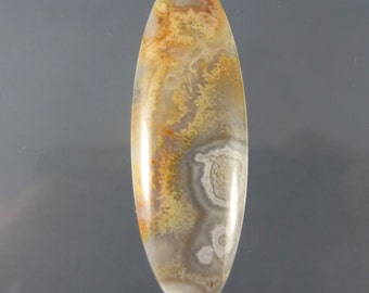 Old Stock Crazy Lace Agate Designer Cabochon