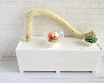 Terrarium with red shades seascape in 1:12 scale