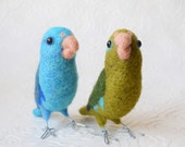 A pair of Parrotlets, any color variation, needle felted birds, wool fiber art animal sculptures