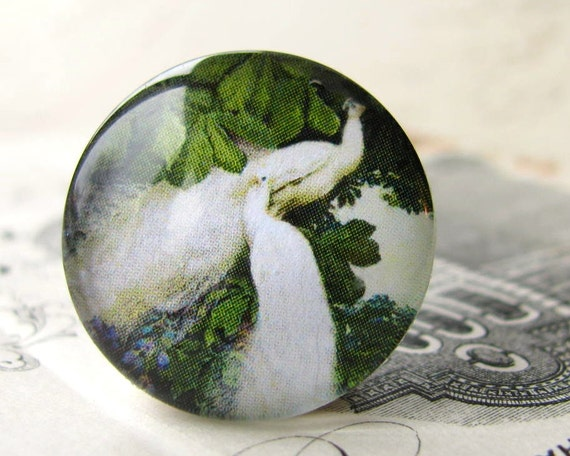 White peacocks, exotic bird, Art Nouveau, handmade cabochon, glass cabochon, round 22mm cabochon, flat back image, delphiniums, green leaves