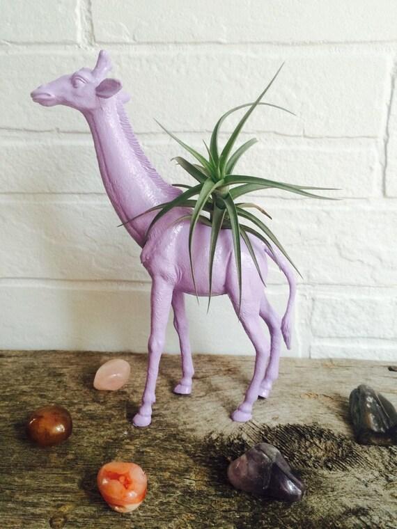 Lavendel Giraffe Air Plant Pflanzer Air Plant von JPlankDesigns