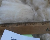 Purebred Cormo Whole Fleece (Terry)