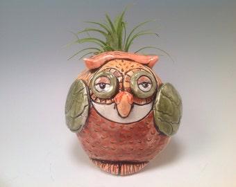 Owl pot/owl art/owl art/owl planter/indoor planter/owls
