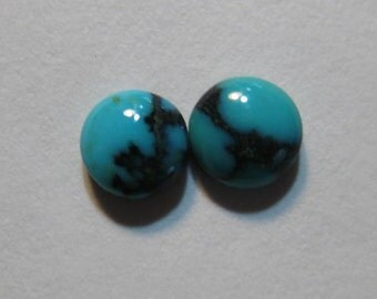 Natural Spider Web Turquoise cabs  ....  2 pieces ... Nevada ...... approx 5 mm   ..... B2783