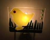 Night Light - Spring Chick