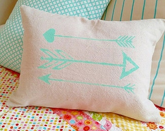 16 x 12 inch teal arrow pillow cover