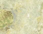 Stonehedge by Linda Ludovico - Woodland (3937-68) - Northcott - 1 Yard