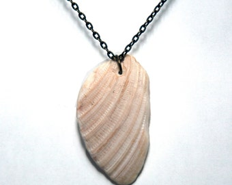 Ivory and beige shell necklace
