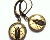 Beetle Earrings Sepia Tint Fashion Jewelry