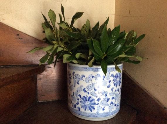 vintage chinois gros bleu blanc conteneur de bin pot cache pot. Black Bedroom Furniture Sets. Home Design Ideas