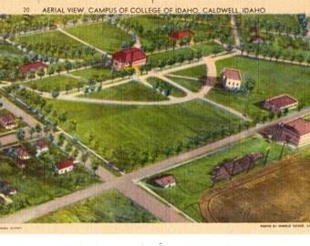 COLLEGE OF IDAHO, Aerial View, Caldwell Idaho Vintage Unused Postcard