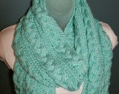Soft Cable Knit Scarf Ready to Be Shipped Robins Egg