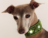 Italian Greyhound Dog Collar - Vintage Look Lime + Black Embroidered Mirror Trim - Boho - Hippy - Festival - scroll to 'Item Details'