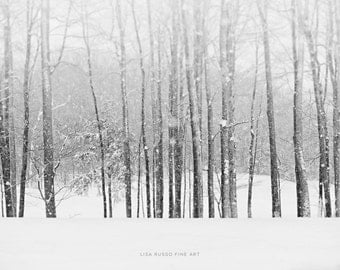 Snow Print or Canvas Wrap, Snowy Forest Landscape, Woods, Tree Landscape Art, Snowy Winter Tree Landscape, Black and White Photography..