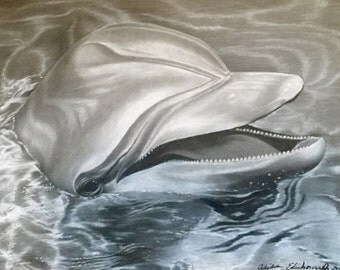 11x14 Swimming Dolphin Black and White Charcoal Limited Edition Print from Original Drawing