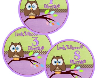 Purple and Green 1 -12 month stickers, Monthly Owl onesie stickers, Purple and Green Onesie stickers. Set of 14.