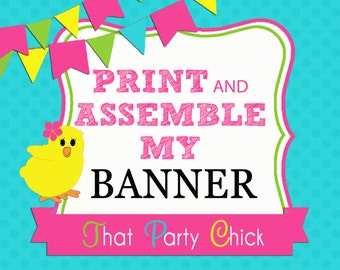 Banner Printing, Assembly and Shipping Add On by That Party Chick