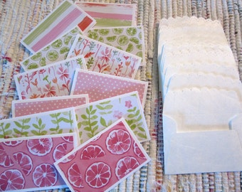 Little Note Cards and Envelopes  Set of 12  Package  #6