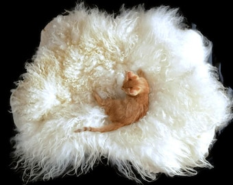 Cat Bed - Pet Bed - Cruelty Free Felted Wool Fleece -  Nash Island - Supporting US Small Farms - Ready to Ship