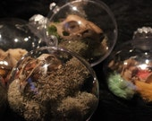 Curio Bone Ornaments with Dyed Paws, Partial Skulls, Feathers,Various Bones, Moss, and Lichen