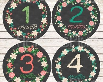 Baby Girl Month Stickers Monthly Baby Stickers, Milestone Baby Month Stickers, Monthly Bodysuit Floral Wreath Chalkboard Chalk Shabby II
