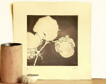 Original Etching Print COTTON FLOWERS Fine Art Botanical Mezzotint Printmaking Wall Decor Floral Lavis Print Artist Proof 12x12