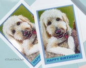 Fluffy White Dog Note Card - Blank or Text, Birthdays, Congrats, Kids, Teens, Adults, Pet Lovers