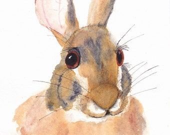 Bunny Rabbit 5x7 Watercolor Painting, painting, Nature,bunny,Wildlife,Animal,Not a Print,mammal,rabbit,cottontail,original,made in ohio