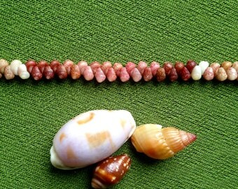 Shell Bracelet - Shell Jewelry - Kauai Shell Jewelry Eco Friendly Natural Shell Bracelet Hand Picked from Kauai Traditional Hawaiian Style