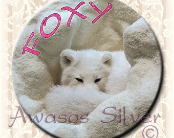 "Foxy White Arctic Fox button. 2.25"" round pin back button, magnet, pocket mirror, keyring/bottle opener"