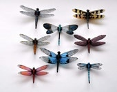 Clearwing Dragonfly Magnets Wholesale Lot of 8 , Decorations, Weddings, Parties, Refrigerator, Home or Office, Handmade