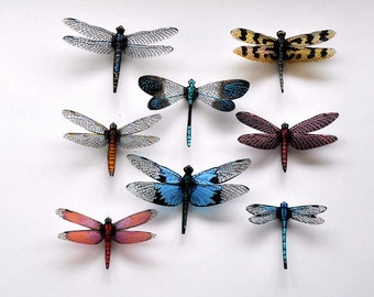 Clearwing Dragonfly Magnets Set of 8 Refrigerator Magnets Kitchen Decor Home Decor Multi Color Gifts Bedroom Decor Wing Span 3-5 inches