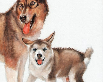 Original Oil Art ALASKAN MALAMUTE Portrait Painting Artist Signed Artwork Puppy Dog