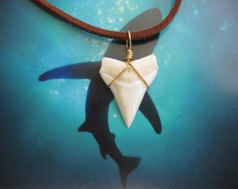 "Shark Tooth Necklace, Modern Day White Shark tooth, Brass wire wrapped, 20"" Suede leather cord"
