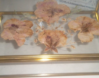 Unique Vintage Pressed flowers in Glass and brass Trinket Box