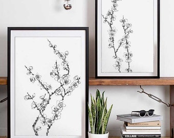 A Set of Plum Blossom Branch drawings