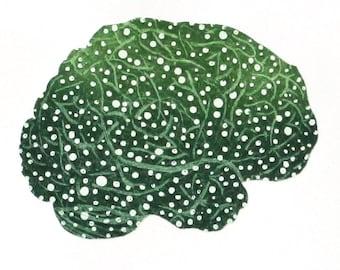 Spectral Sensitivities - printmaking - gift for doctor - gift for scientist - neurology - neurologist - brain - organ - brain art - neurons
