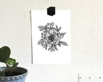 Magnolia Botanical Floral Pen and Ink Original Illustration Print