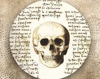 Skull, Da Vinci style melamine plate