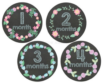 Baby Milestone Stickers Month Stickers Baby Monthly Stickers Chalkboard Monthly Stickers Girls Baby Stickers