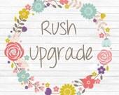 Rush Upgrade and Insurance